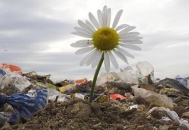 Трагедија депоније – излаз је у повезивању